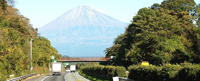 my_yamadakumi-1.jpg