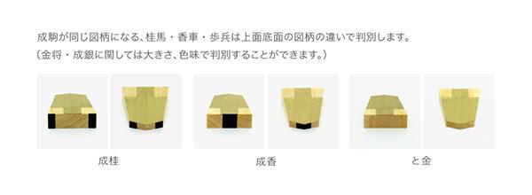 taimeikoma_06.jpg